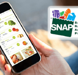 Top 5 Providers To Get SNAP Free Phone 2020
