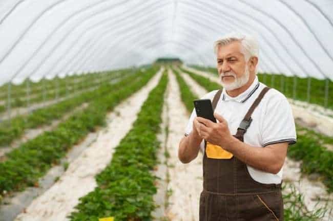 What is the least expensive cell phone plan for seniors