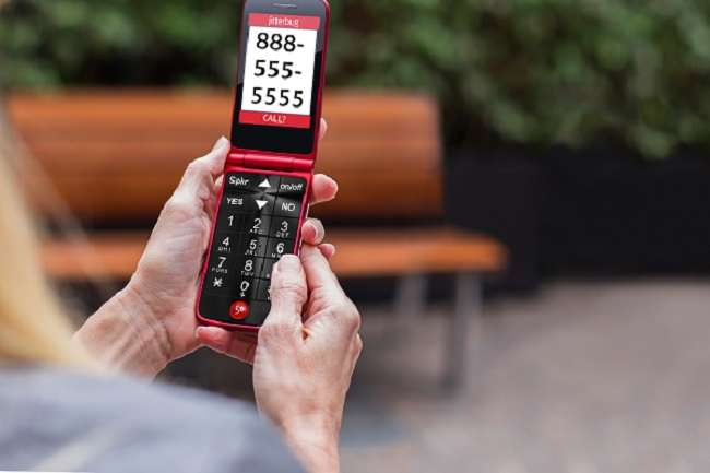 Does Verizon have flip phones for seniors